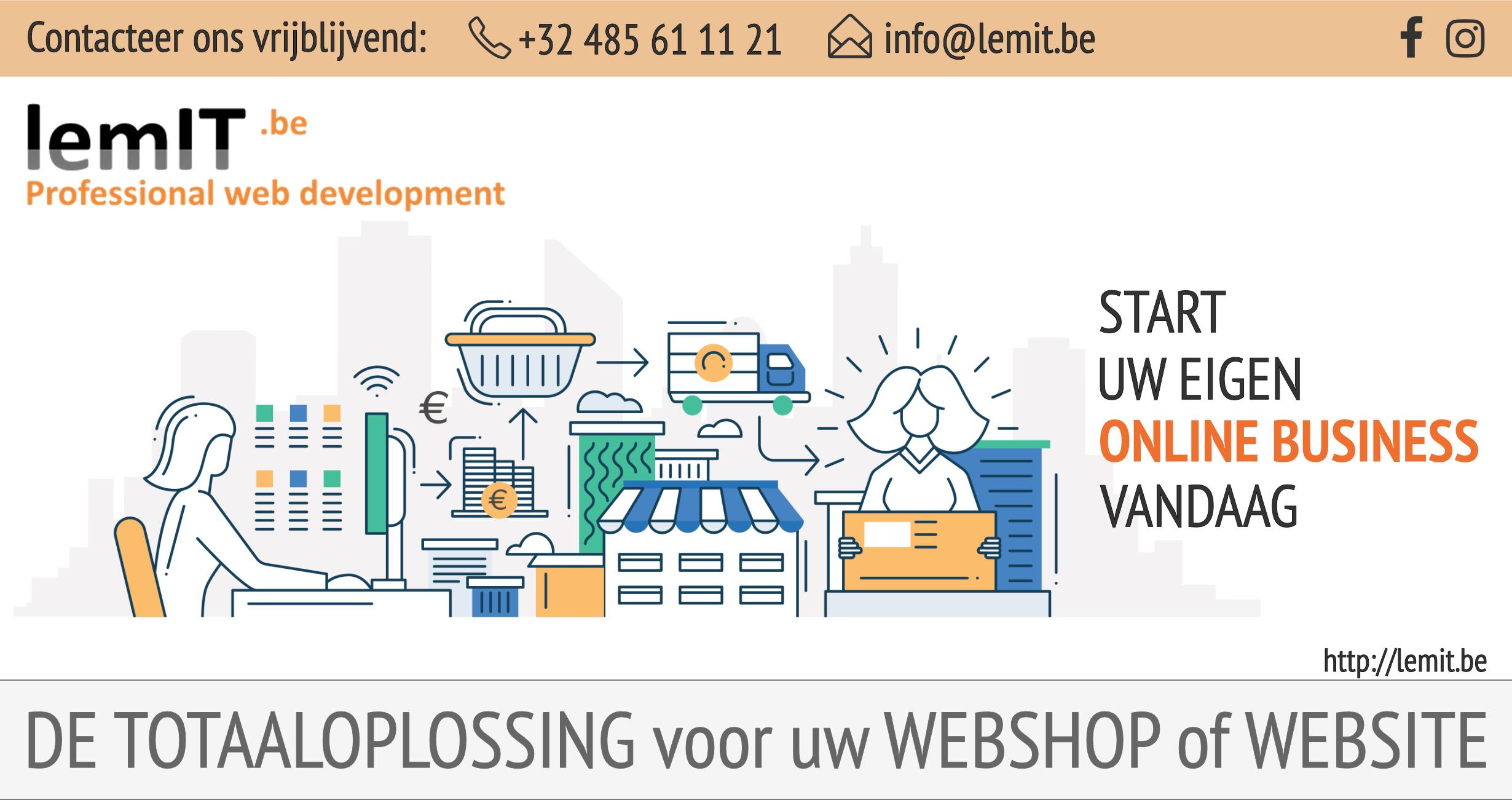 lemIT webshop services